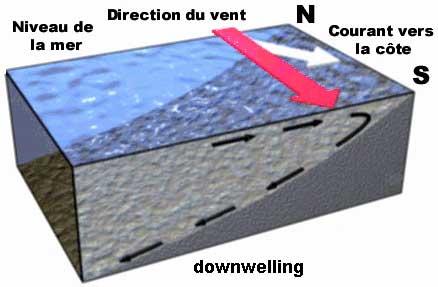 courant marin de surface